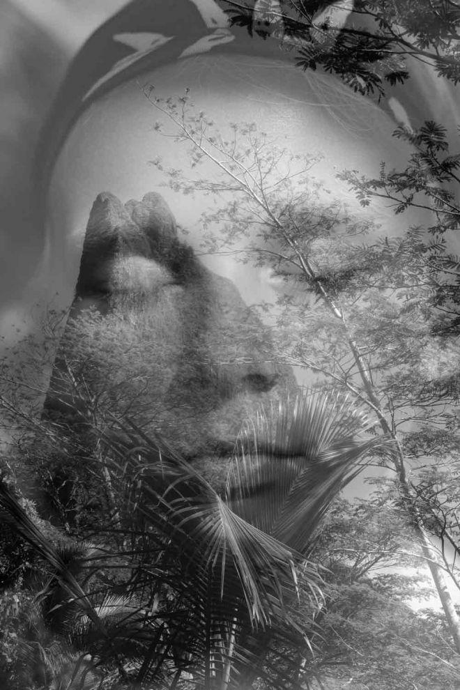 KWS_nettside_galleribilde_Tone_Telma-jungel-portrett
